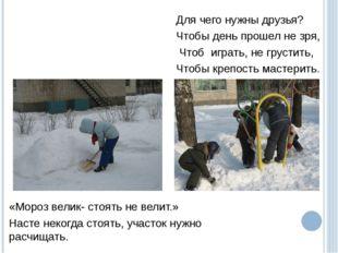 «Мороз велик- стоять не велит.» Насте некогда стоять, участок нужно расчищать