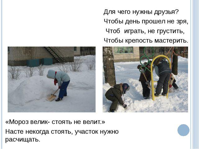 «Мороз велик- стоять не велит.» Насте некогда стоять, участок нужно расчищать...