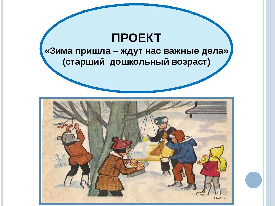 ПРОЕКТ «Зима пришла – ждут нас важные дела» (старший дошкольный возраст)