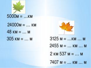 5000м = …км 24000м = … км 48 км = … м 305 км = … м 3125 м = …км … м 2455 м =