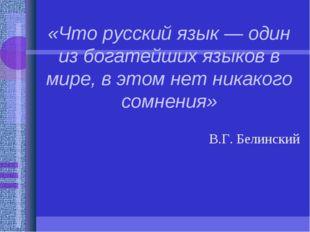 «Что русский язык — один из богатейших языков в мире, в этом нет никакого сом