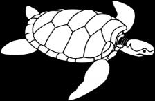 C:\Users\Анюта\Desktop\осень 555\tartaruga-marinha-desenho-colorir-300x225.png