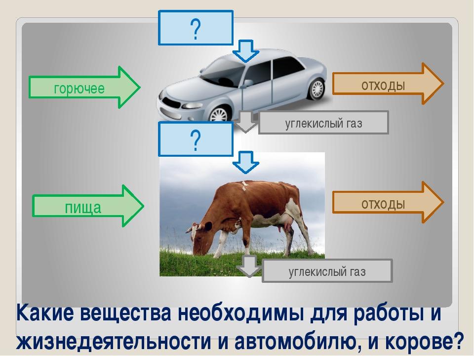 Какие вещества необходимы для работы и жизнедеятельности и автомобилю, и коро...