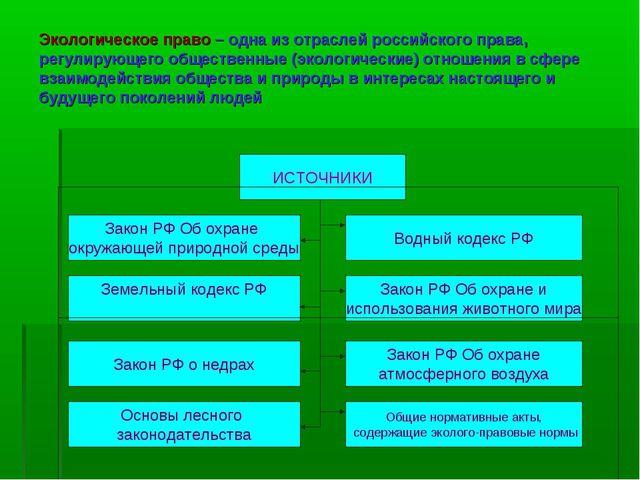 Экологическое право – одна из отраслей российского права, регулирующего общес...