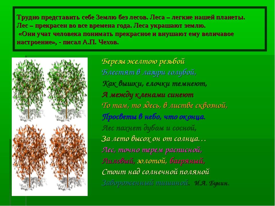 Трудно представить себе Землю без лесов. Леса – легкие нашей планеты. Лес – п...