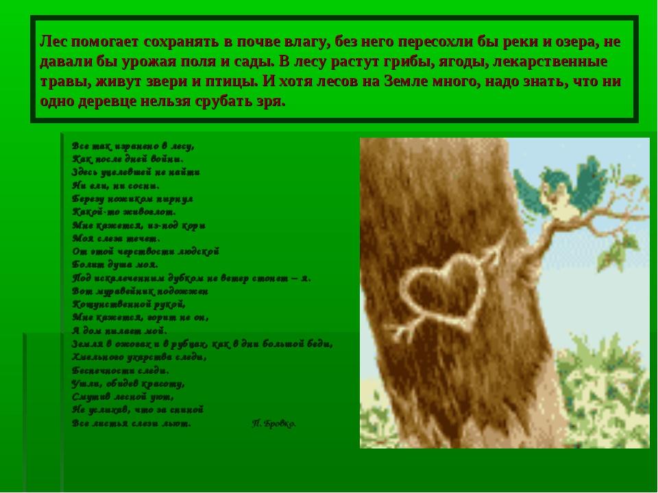 Лес помогает сохранять в почве влагу, без него пересохли бы реки и озера, не...