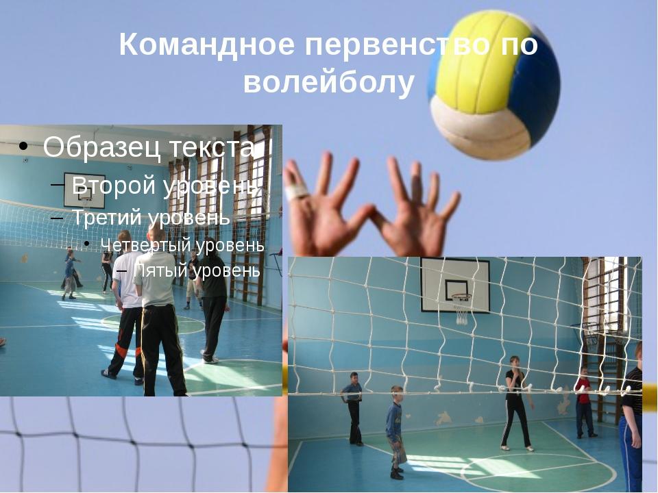 Командное первенство по волейболу