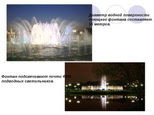 Диаметр водной поверхности поющего фонтана составляет 55 метров. Фонтан подсв