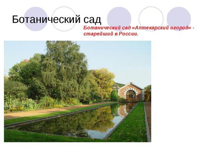 Ботанический сад Ботанический сад «Аптекарский огород« - старейший в России.