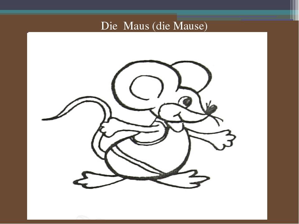Die Maus (die Mause)