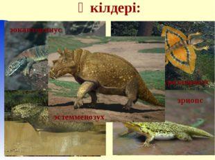 Өкілдері: двиния двинозавр диметродон ивантозавр иностранцевия каккопс лантан