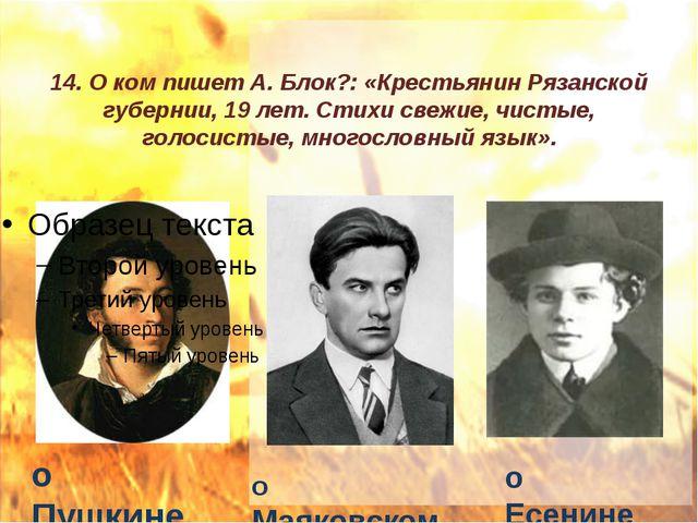 14. О ком пишет А. Блок?: «Крестьянин Рязанской губернии, 19 лет. Стихи свежи...