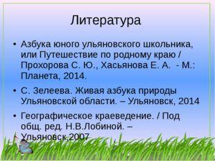 Литература Азбука юного ульяновского школьника, или Путешествие по родному кр