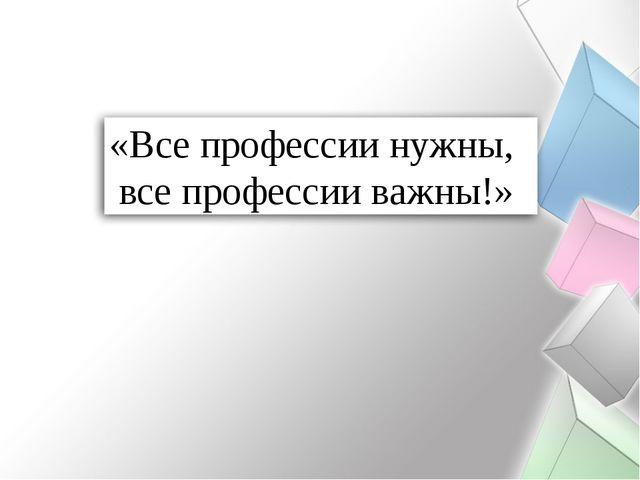 «Все профессии нужны, все профессии важны!»