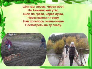 Шли мы лесом, через мост, На Аникинский утёс. Шли по грязи, через лужи, Через