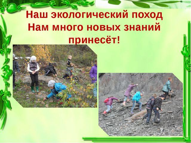 Наш экологический поход Нам много новых знаний принесёт!