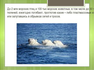 До 2 млн морских птиц и 100 тыс морских животных, в том числе до 30 тыс тюлен