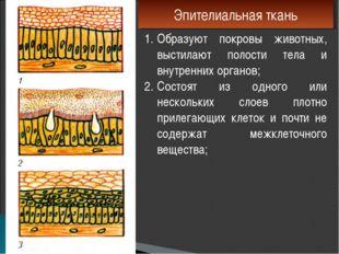 Эпителиальная ткань Образуют покровы животных, выстилают полости тела и внутр