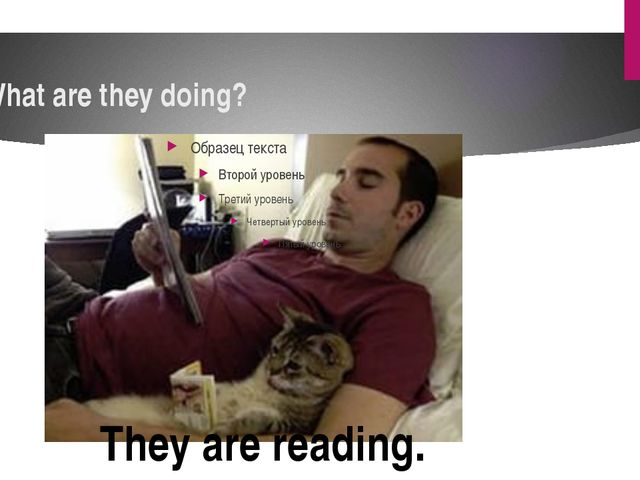 What are they doing? They are reading.