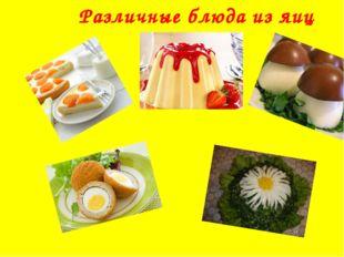 Различные блюда из яиц