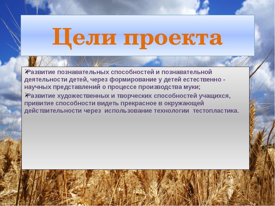 Цели проекта Развитие познавательных способностей и познавательной деятельнос...