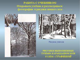 РАБОТА С УЧЕБНИКОМ Открываем учебник и рассматриваем фотографии и рисунки зим