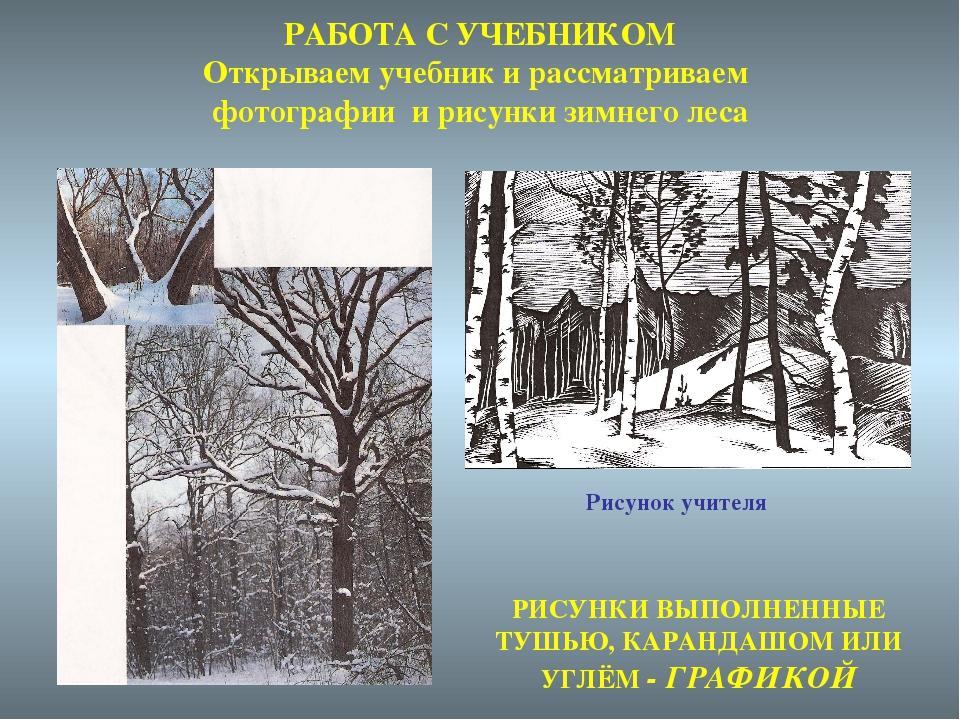 РАБОТА С УЧЕБНИКОМ Открываем учебник и рассматриваем фотографии и рисунки зим...
