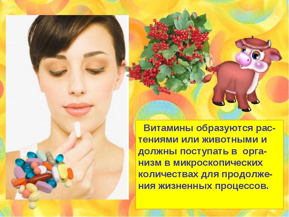 Витамины образуются рас- тениями или животными и должны поступать в орга- ни...