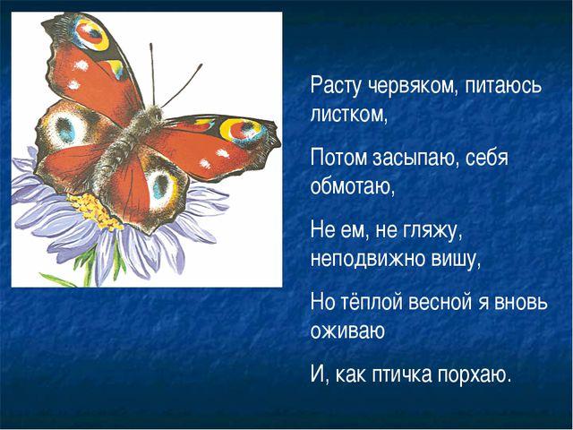 Расту червяком, питаюсь листком, Потом засыпаю, себя обмотаю, Не ем, не гляжу...