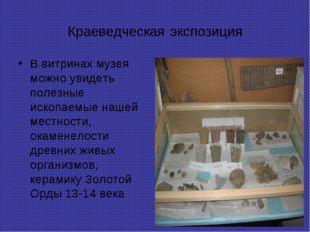 Краеведческая экспозиция В витринах музея можно увидеть полезные ископаемые н