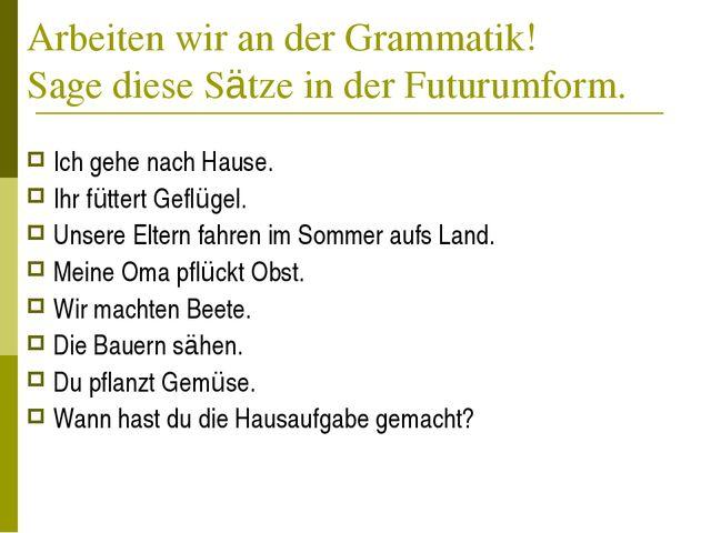 Arbeiten wir an der Grammatik! Sage diese Sätze in der Futurumform. Ich gehe...