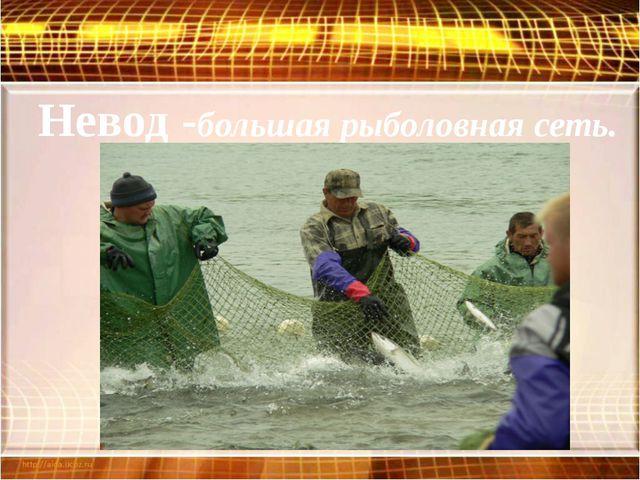 Невод -большая рыболовная сеть.