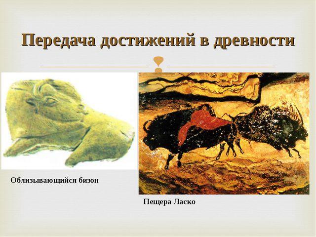 Облизывающийся бизон Передача достижений в древности Пещера Ласко