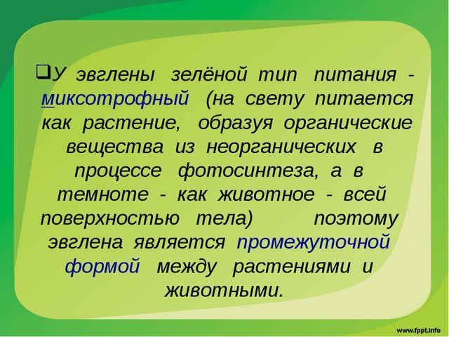 У эвглены зелёной тип питания - миксотрофный (на свету питается как растение,...