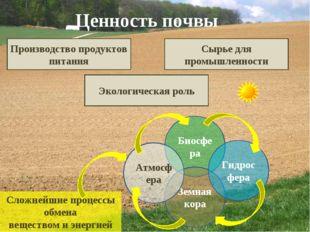 Ценность почвы Производство продуктов питания Сырье для промышленности Эколог