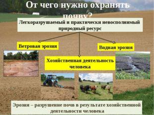 От чего нужно охранять почву? Легкоразрушаемый и практически невосполнимый пр