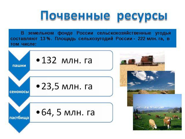 В земельном фонде России сельскохозяйственные угодья составляют 13 %. Площад...
