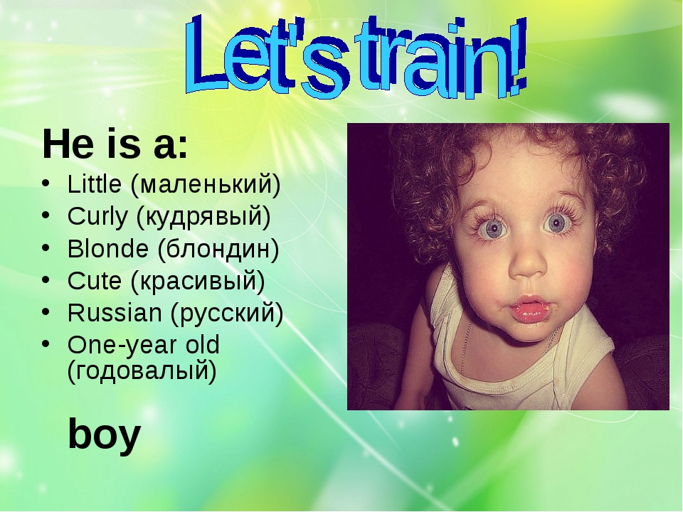 Не is a: Cute (красивый) Little (маленький) One-year old (годовалый) Curly (к...