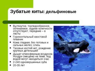 Зубатые киты: дельфиновые Вытянутое, торпедообразное, обтекаемое, задние коне
