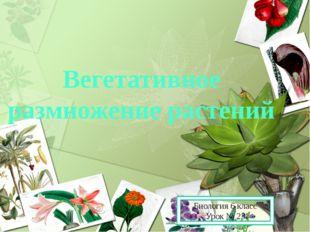 Вегетативное размножение растений Биология 6 класс Урок № 23