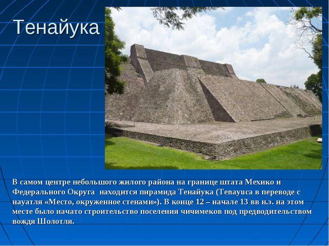 Тенайука В самом центре небольшого жилого района на границе штата Мехико и Фе...
