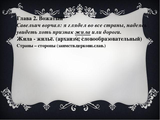 Глава 2. Вожатый Савельич ворчал: я глядел во все страны, надеясь увидеть хот...