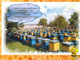 Есть в саду пчелиный домик – Ульем все его зовут. Кто живет в нем? Сладкий г