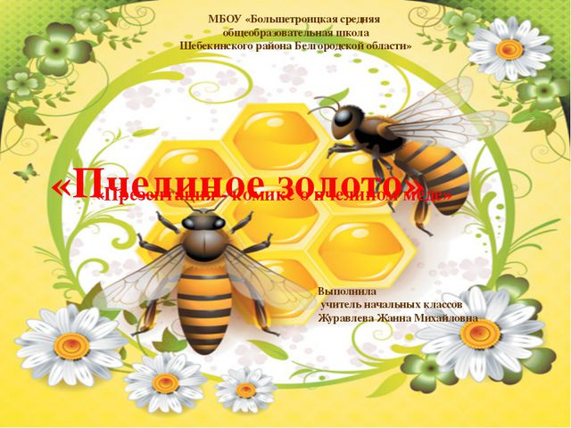 МБОУ «Большетроицкая средняя общеобразовательная школа Шебекинского района Б...