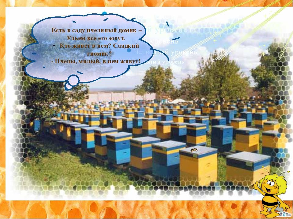 Есть в саду пчелиный домик – Ульем все его зовут. Кто живет в нем? Сладкий г...