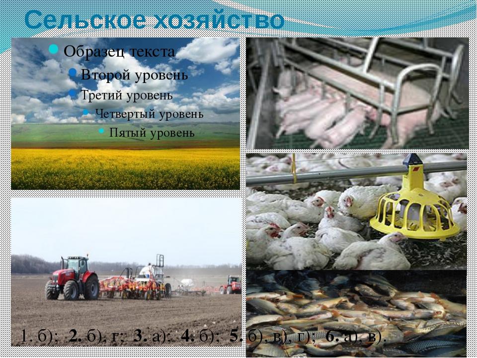 Сельское хозяйство 1. б); 2. б), г; 3. а); 4. б); 5. б), в), г); 6. а), в).