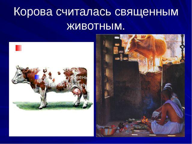 Корова считалась священным животным.