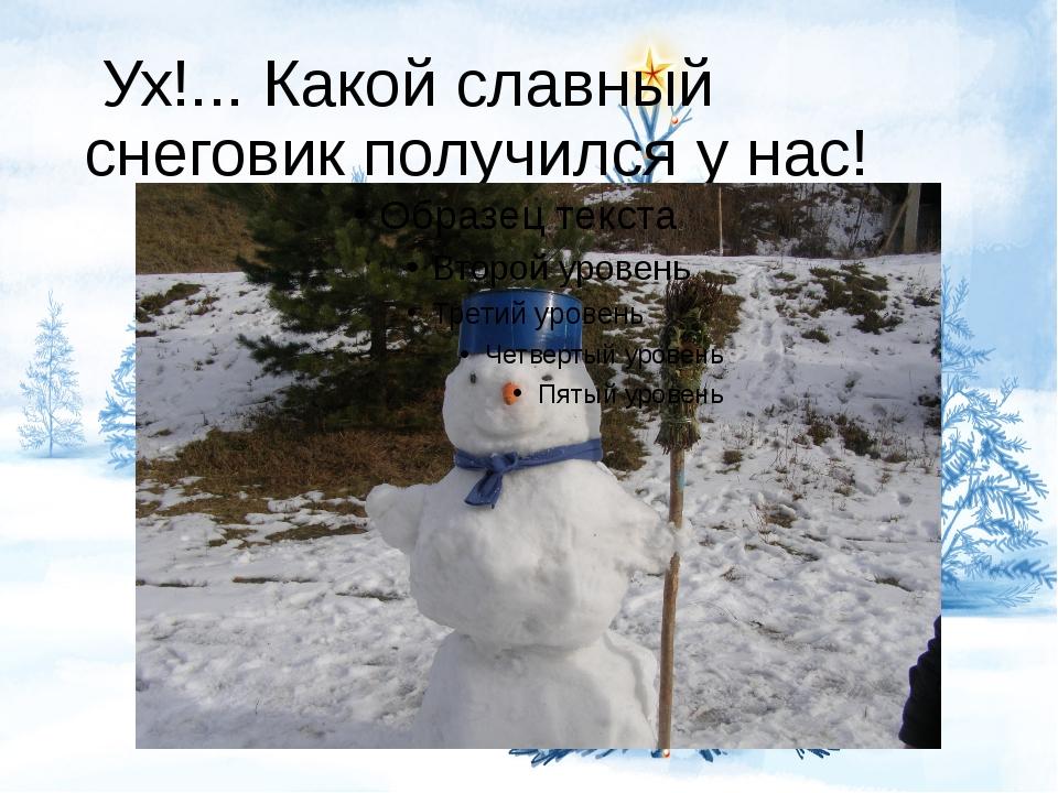 Ух!... Какой славный снеговик получился у нас!
