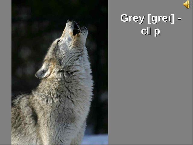 Grey [greι] - сұр