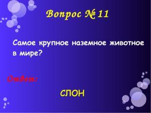 Вопрос № 11 Ответ: